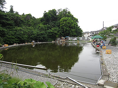 fishing_pond002.jpg