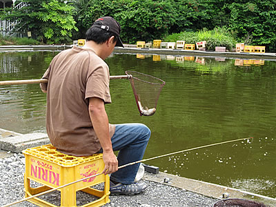 fishing_pond006.jpg